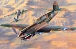 09086 Самолет P-40E Warnawk (HASEGAWA) 1/48