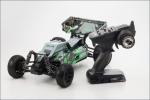 1:10 EP 4WD Racing Buggy R/S Dirt HOG Type 2