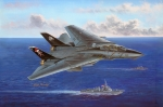 80367 Самолет F-14B Tomcat (Hobby Boss) 1/48