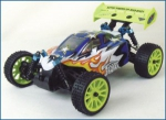 1/16 EP 4WD Off Road Buggy